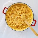 Creamy Pumpkin Pasta. Pumpkin + Alfredo Sauce + Pasta = Fall Dinner of your DREAMS! This pasta is surprisingly easy to make. Don't forget the toasted herb walnuts to sprinkle on top. Recipe at KathleensCravings.com #pumpkinpasta #pumpkinpastasauce #pumpkinalfredo #alfredopasta #pumpkinrecipes