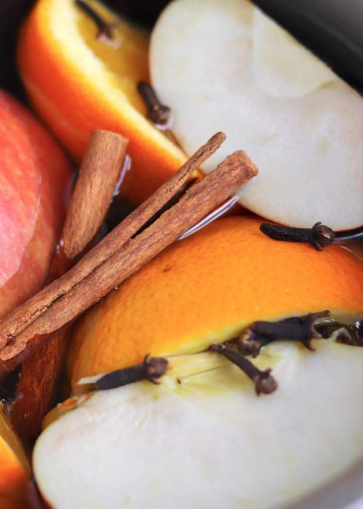 Close up shot of stovetop potpourri