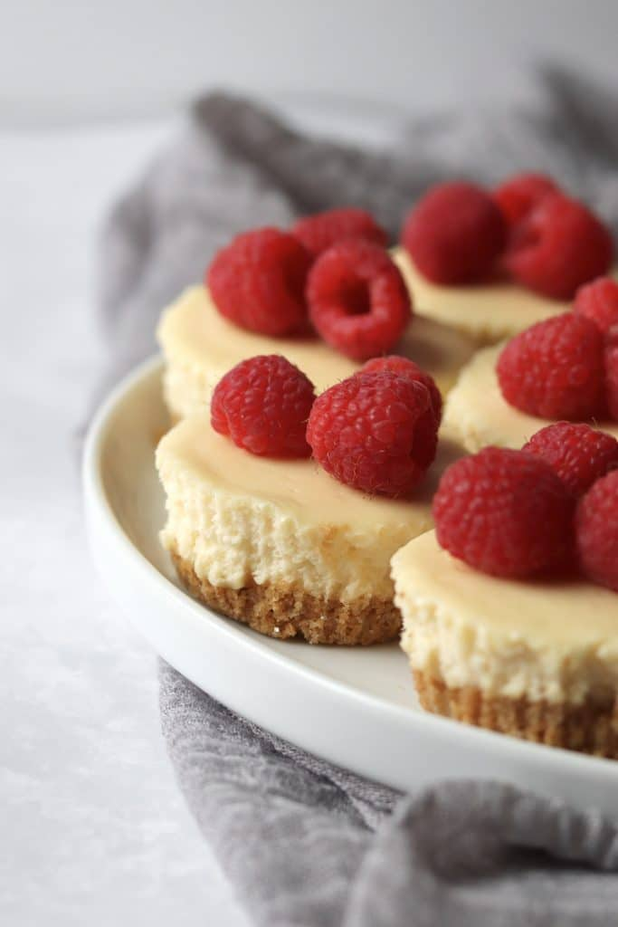 Mini cheesecakes topped with raspberries on a plate