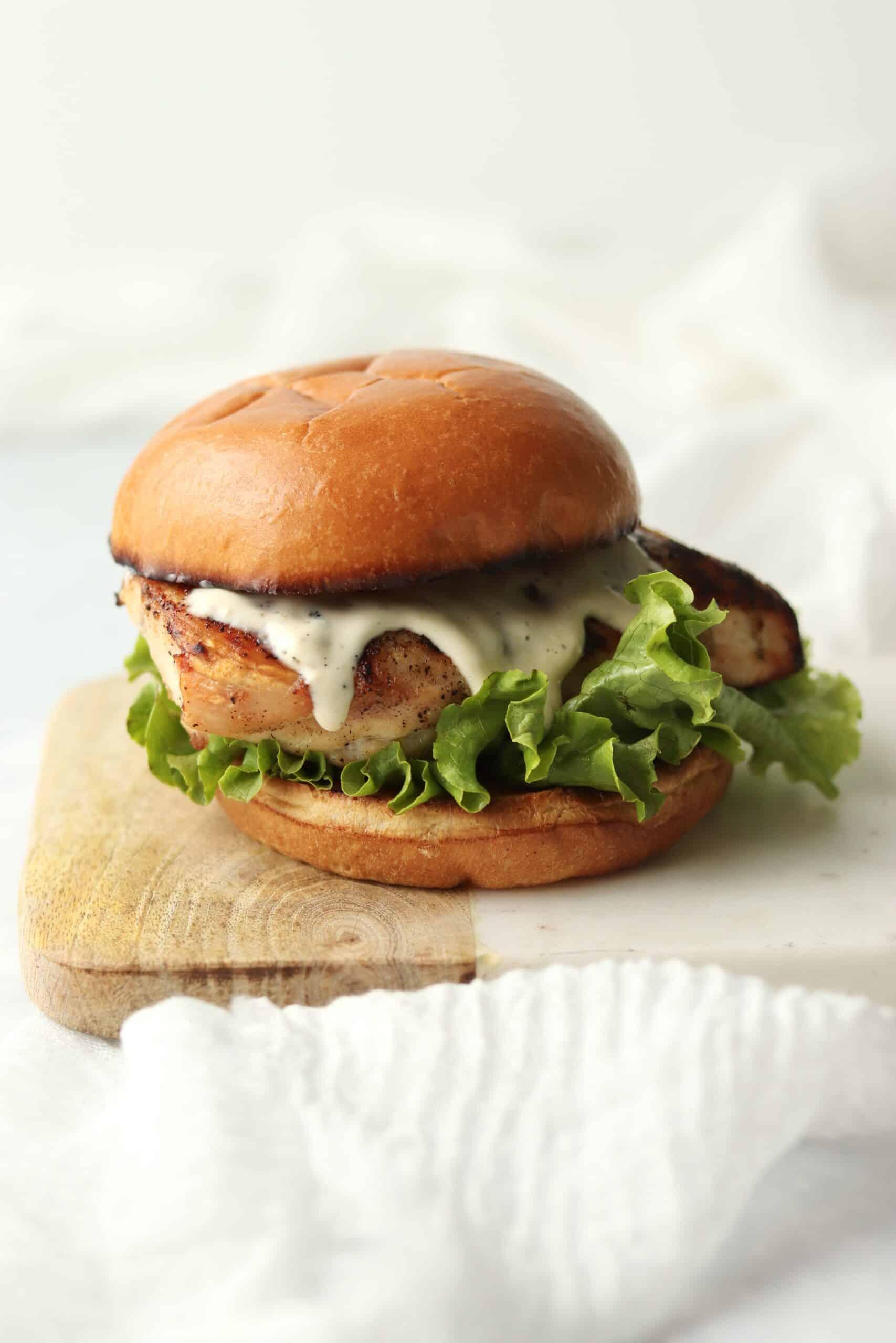 grilled chicken caesar sandwich